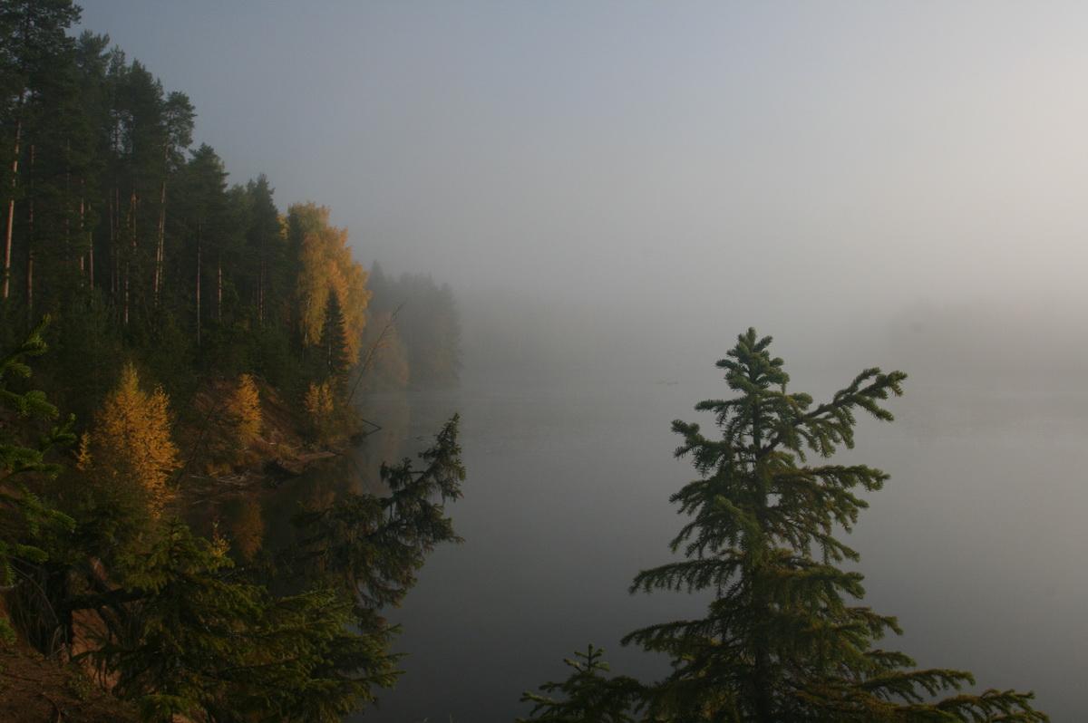 Осенний туман над Илексой